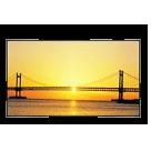 Ecran LCD anti-reflet 32 pouces