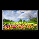 Moniteur | Ecran LCD 55 pouces